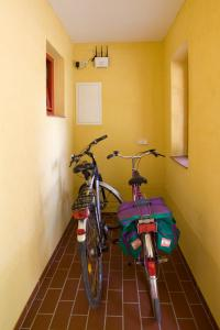 Andere Aktivitäten im Aparthotel oder in der Nähe