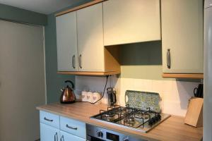A kitchen or kitchenette at Charming Victorian house in historic Rochester