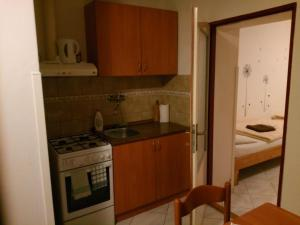 A kitchen or kitchenette at Penzion Aqua