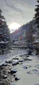 Ananiko during the winter
