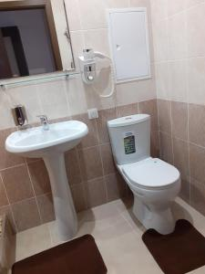 A bathroom at Gostinitsa Mir na Karbysheva