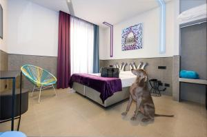 Pet or pets staying with guests at Hotel Relais Dei Papi