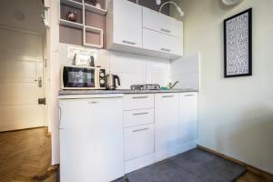 Kuchnia lub aneks kuchenny w obiekcie Elegant Apartment Copernicus
