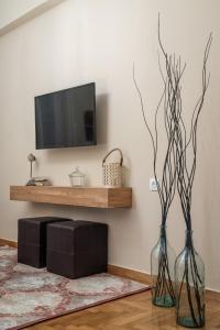 TV a/nebo společenská místnost v ubytování Absolute Athens XI