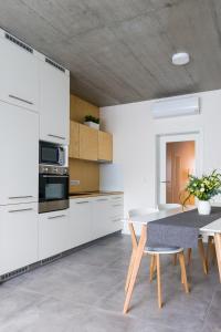 Kuchyň nebo kuchyňský kout v ubytování Residence Trafick