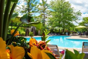 The swimming pool at or near Hockley Valley Resort