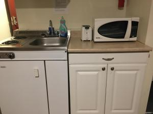 A kitchen or kitchenette at Ace Inn