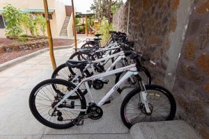 Biking at or in the surroundings of Casa de Mathias