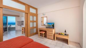 טלויזיה ו/או מרכז בידור ב-Poseidonia Apartments