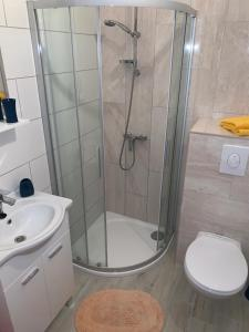 A bathroom at Apartments Borovina