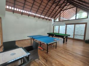 Table tennis facilities at The Birchwood Retreat, Madikeri or nearby