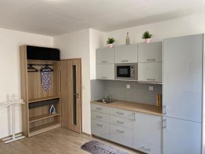 Kuchyň nebo kuchyňský kout v ubytování SATYS Apartments - Free Wifi and parking