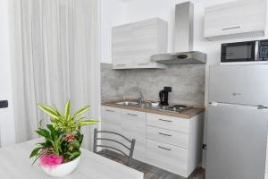 A kitchen or kitchenette at Albergo Ristorante Silvio