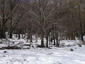 Apartaments Rural Montseny during the winter