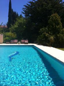 The swimming pool at or near Saint Paul le Marseillais Gites