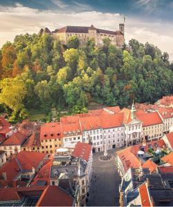 A bird's-eye view of AB Ljubljana - Prince Filip