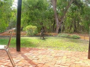A garden outside Yallingup Pet Friendly Bush Retreat