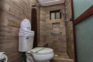 A bathroom at Hotel Mansion del Cantador