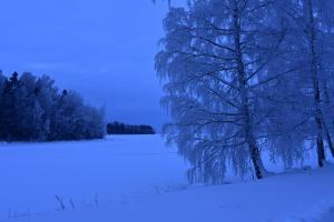 Petäys Resort talvella