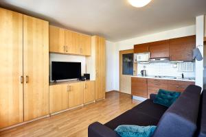 A kitchen or kitchenette at Apartmán Klínovec 365