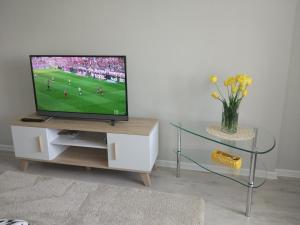 A television and/or entertainment center at Apartment on Kamajskaja near Minsk-Arena