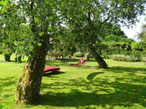 A garden outside B&B La Pommeraie