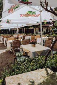 Ein Restaurant oder anderes Speiselokal in der Unterkunft Hotel Zur alten Mühle