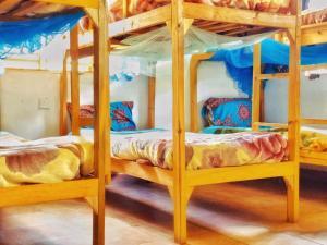 Een stapelbed of stapelbedden in een kamer bij Pakachere Backpackers Lodge