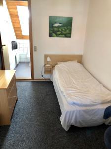 En eller flere senge i et værelse på Danhostel Sandvig