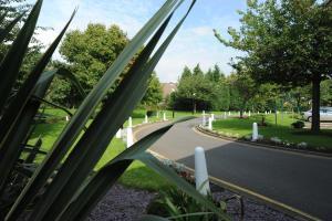 A garden outside Holiday Inn Washington