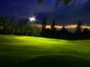 ホテルの敷地内または近くにあるゴルフ施設
