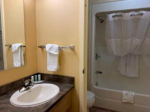 Salle de bains dans l'établissement Quality Inn Riviere-Du-Loup