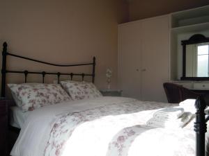 Легло или легла в стая в Blue Dolphin