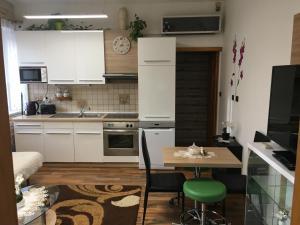 Kuchyň nebo kuchyňský kout v ubytování Apartment Hlinská