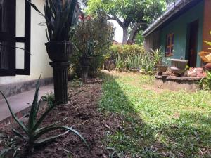 A garden outside Mazz Homestay