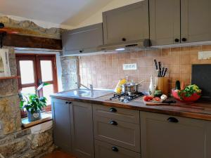 A kitchen or kitchenette at Apartment Franko - Hum