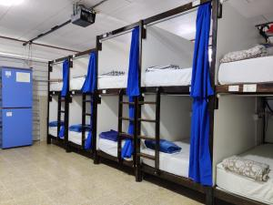 A bunk bed or bunk beds in a room at TripOn Open House