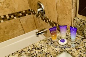 A bathroom at Grand Legacy At The Park