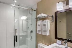 A bathroom at Quality Inn Centre-Ville