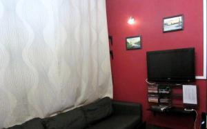 Телевизор и/или развлекательный центр в Олд Флэт Хостел на Советской