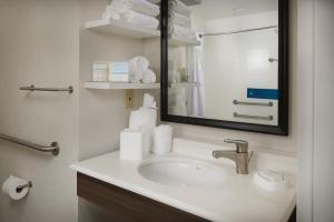 A bathroom at Hampton Inn Titusville/I-95 Kennedy Space Center
