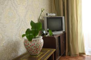 A television and/or entertainment center at Apartment Horkoho 7A