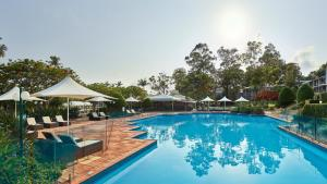 The swimming pool at or near InterContinental Sanctuary Cove Resort