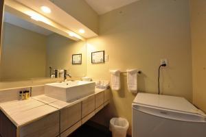 A bathroom at Hotel Le Voyageur