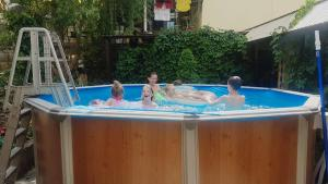 The swimming pool at or near Guest house Sibiriachka
