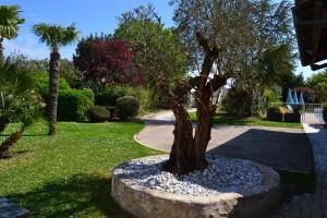 A garden outside La Rochelle Lodge