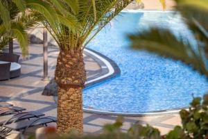 The swimming pool at or near Vitalclass Lanzarote Resort