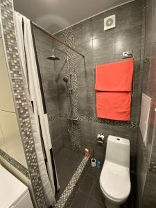 A bathroom at ZelApart 17