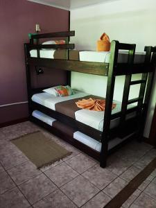 Ein Etagenbett oder Etagenbetten in einem Zimmer der Unterkunft Aracari Garden Hostel