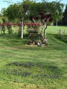 A garden outside Gite Le Maine d'Autana & La Ferme Du Domaine
